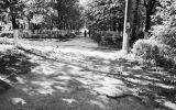 Новости: Нужен хозяйский подход - новости Чебоксары, Чувашия