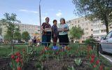 Новости: Три Галины и тюльпаны - новости Чебоксары, Чувашия