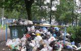 Новости: Не снимайте мусор с повестки дня - новости Чебоксары, Чувашия