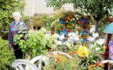 Новости: Город-сад - новости Чебоксары, Чувашия