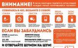 Новости: Лес не прощает ошибок - новости Чебоксары, Чувашия