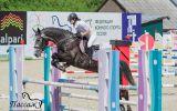 Новости: Скачут кони резвые - новости Чебоксары, Чувашия