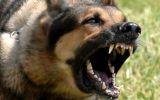 Новости: Больно и страшно - новости Чебоксары, Чувашия
