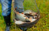 Новости: На рыбалку с паспортом - новости Чебоксары, Чувашия