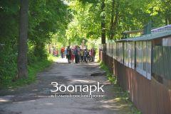 Из летнего лагеря в зоопарк Ельниковская роща Зоопарк
