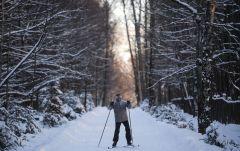 Катание на лыжах. Фото РИА НовостиЭксперты назвали самый полезный вид зимнего спорта ЗОЖ
