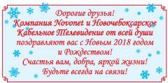 Из года в год с добром идет Novonet