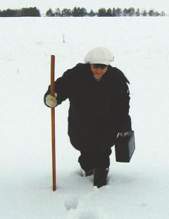 Марина Китарьева проводит снегосъемку в полях возле с. Атлашево. На основании полученных данных составляется прогноз по паводку. Фото из личного альбома М.КитарьевойМарина КИТАРЬЕВА: Растущие в наших широтах бананы останутся фантастикой  День метеореологии Гидрометцентр