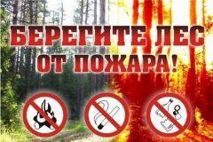 Сбережем лесаВ лесах республики установился 4 (высокий) класс пожарной опасности Безопасность на природе