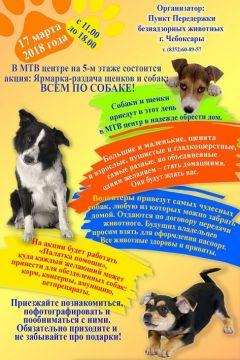17 марта на выставка-пристрое «Всем по собаке» можно завести четвероногого друга волонтеры Волонтерство 2018 - Год волонтера