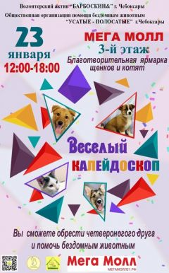 Благотворительная ярмарка по пристройству бездомных щенков и котят Благотворительность