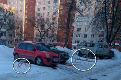 Фото читательницы Татьяны В.Не квакают, не лают,  машину поставить мешают Комфортная городская среда