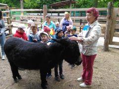 Имя для нового жителя зоопарка в Новочебоксарске дала горожанка Римма Иванова
