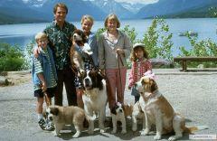"""Собаки - радость в доме. Фото: kinopoisk.ruУченые обнаружили  у человека ген """"собаколюбия"""" собаки генетика Исследование"""