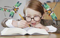Коллаж Марии СМИРНОВОЙПро боевых стрекоз,  или Ох уж эти тесты! тест Родительский взгляд домашняя работа