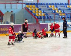 """Мастер-класс """"Сокола-2007"""" для детской следж-хоккейной команды """"Атал"""""""