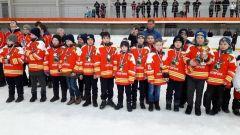 «Новчик» - победитель республиканских соревнований юных хоккеистов клуба «Золотая шайба»  «Золотая шайба»