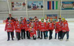"""87821c2e15f4275e.jpg""""Сокол-2008"""" возвращается из города Туймазы с серебром детский хоккей"""
