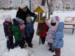 """Акция """"Покормим птиц"""" в детском саду № 47.Зимний калейдоскоп в детских садах Дошколенок"""