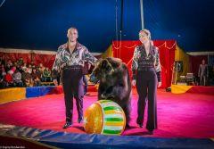 Андрей и Олеся Березенцевы: По карьерной лестнице под купол цирка
