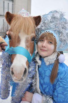 Copy_of_DSC_0327.JPGПони, маленькие кони,  для детей на все готовы Новый год-2014
