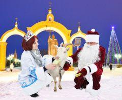 Фото Александра Сидорова и Валерия БаклановаС Новым годом! События 2014 года