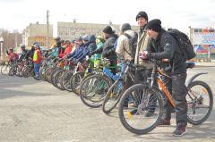 """Около 60 человек участвовали в этом велопробеге. """"108 минут"""": доехали все! велопробег"""
