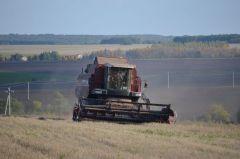 Нравится зерно убирать. И все тут! Человек труда Есть такая профессия