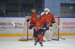 Капитан команды председатель Совета Центросоюза Дмитрий Зубов забил гол с буллита .   Хоккей на высшем уровне  хоккей