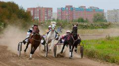 Лошади неудержимы. Фото Вячеслава ЕлочкинаАх вы кони мои, скакуны! конные бега