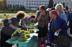"""""""пробуйте виноград, свой, новочебоксарский...""""Полвека для города — возраст расцвета 50 лет Новочебоксарску"""