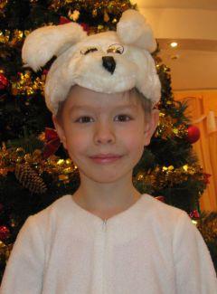 Трофимов ИльяКакими добрыми делами  вы похвастались бы перед Дедом Морозом? Новый год-2013 Устами младенца