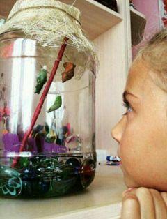 Катя наблюдает за развитием коконов бабочек. Фото автораЛето в банке Школа-пресс