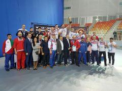 Команда чемпионов мира.Золотой панкратион единоборства