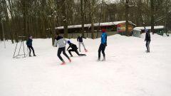 Мини-футбол в Ельниковской роще Ельниковская роща