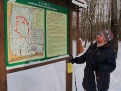 Лариса Николаевна Петрова в роще гуляет каждый день вот уже четыре года. Фото Марии СМИРНОВОЙЧто там под снегом? Среда обитания