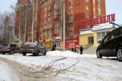 "Фото Ирины ХАННА""Змеи"" под снегом Фотофакт"