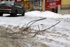 """""""Змеи"""" под снегом Фотофакт"""