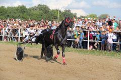 Спортивный праздник посетило более 3000 человек. Фото Марии СМИРНОВОЙКакие же красавцы,  дух захватывает Всероссийские конные бега