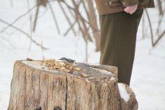 IMG_1201.JPGЭти смешные птицы (фото) Проект: Как я провел выходные Международный день птиц день дурака