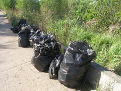 IMG_1302.JPGО роще заботятся капитально уборка мусора Ельниковская роща Всем городом - против мусора
