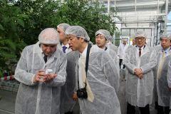 Японцы восхищены чувашскими огурцами Посол Японии