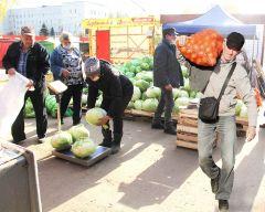 На городском рынке семьи закупают картошку мешками и капусту на засолку.  Фото Максима БОБРОВАЩи и борщи не отменяются