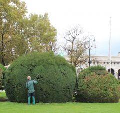 Садовники следят за тем, чтобы деревья в парках держали форму.Моцарт, штрудель, Бельведер Колесо путешествий