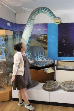 Некоторые рептилии как настоящие, только в уменьшенном размере.По следам Ленина и... ихтиозавра Ундоры ульяновская область Тропой туриста