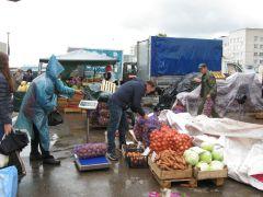 Торговля идет и в дождь.Идет зима. Время пополнять закрома Дары осени фоторепортаж