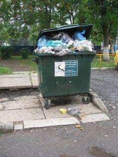 Победим мы мусор или он нас победит? мусор в городе мусор