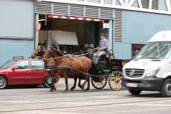 Транспорт для туриста — венский фиакр.Моцарт, штрудель, Бельведер Колесо путешествий