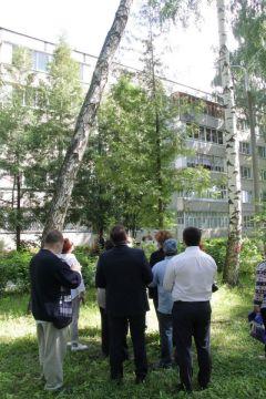 За 45 лет аллея разрослась так, что деревья нависли над дорожкой.Аллея ветеранов: вы шумите, березы Комфортная среда