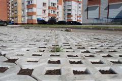 Фото автораВ Новочебоксарске появилась  первая экопарковка экопарковка
